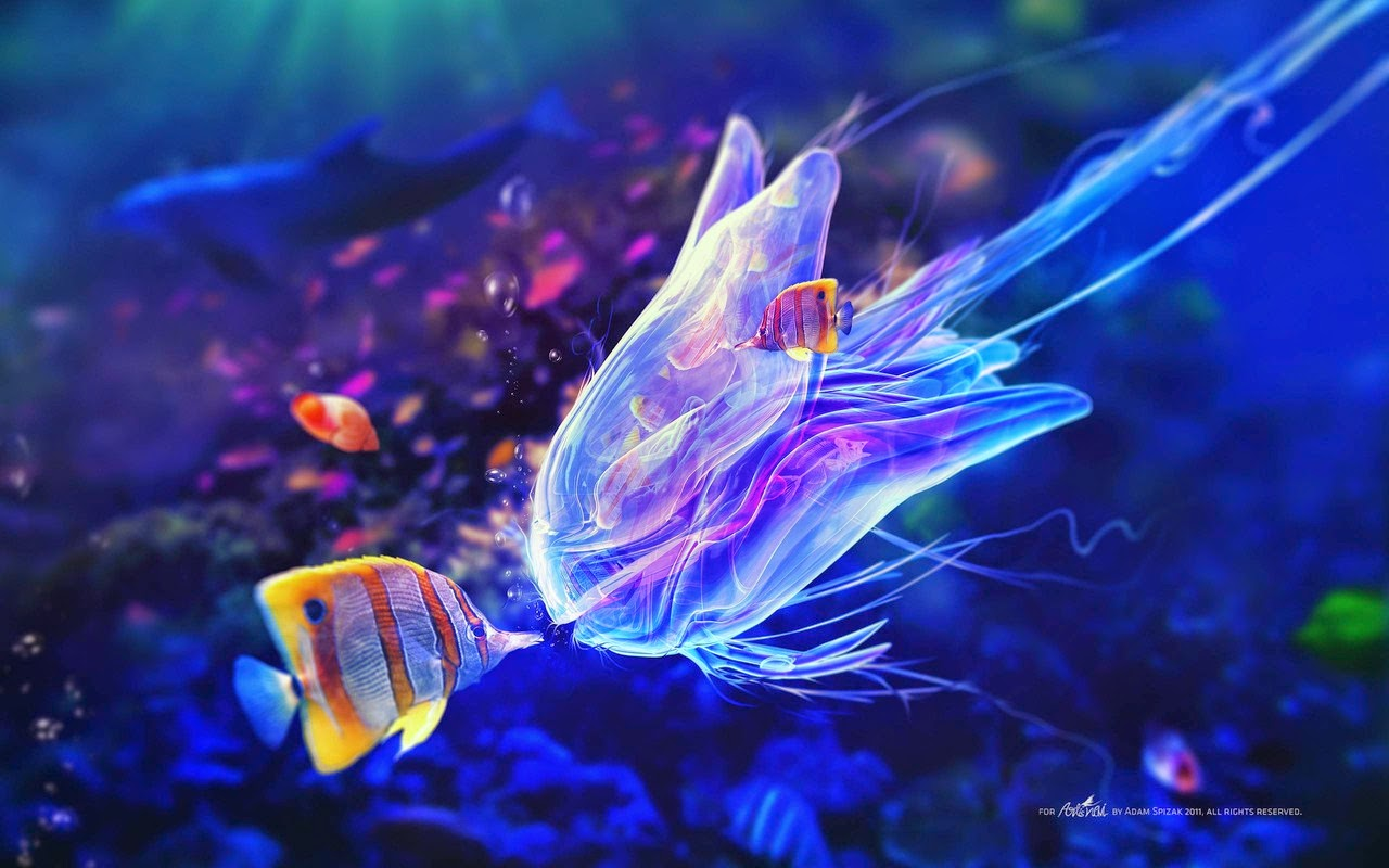 Most Beautiful Sea Creatures In The World